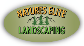 natures-elite-logo