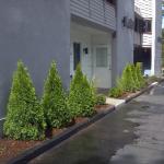 Pier 3 Condominiums Laconia NH  Landscaping installation