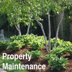 our services property maintenance